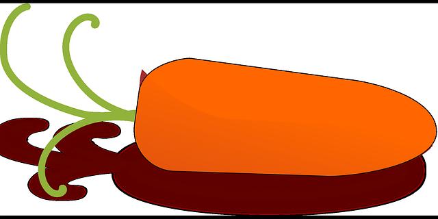 kreslená mrkev
