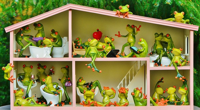 žabičky v domečku